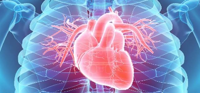Arterielle Hypertonie: Die Krankheitslast hat sich verdoppelt!